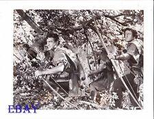 Richard Todd True Story Of Robin Hood VINTAGE Photo