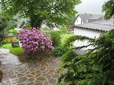 Ferienwohnung Eifel 3 Sterne  Last Minute Wlan Eifel  Wandern Erholung Ruhe