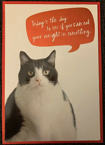 HALLMARK HAPPY BIRTHDAY FAT CAT GREETING CARD