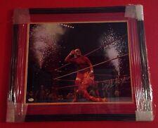 Hulk Hogan  signed auto 16x20 Photo Double Matted Framed JSA #I15464 WWE