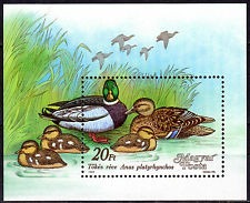 HUNGARY MAGYAR 1988 Ducks Souvenir Sheet MNH - FREE SHIPPING