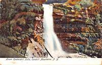 CATSKILL MOUNTAINS NEW YORK~LOWER KAATERSKILL FALLS POSTCARD 1900s