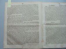 1861 34 Juden in Prag Antisemitismus Schrift des Rabbi Weintraub aus Königsberg