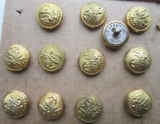 Lot of 12 Usmc buttons: 1870-80s