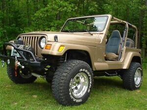 N-Fab J9746-TX Nerf Step Bar Wheel To Wheel Fits 97-06 Wrangler (TJ)