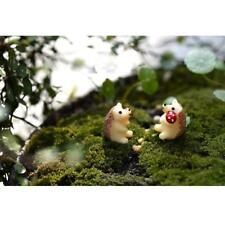 10pcs Miniature Mushroom Hedgehog Resin Decor Bonsai Ornament Garden Decor