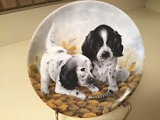 Edwin M. Knowle