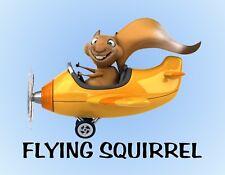 METAL REFRIGERATOR MAGNET Yellow Airplane Flying Squirrel Humor Squirrels