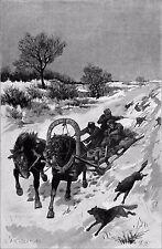 RUSSIE - CHASSE aux LOUPS en TROÏKA à DEUX CHEVAUX - Jolie gravure du 19e siècle