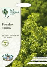 Mr Fothergills - Vegetable - RHS Parsley Curlina - 1000 Seeds