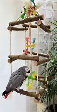 Lampadario a sospensione libero sede Tower ALTALENA pappagalli liberamente sede ** NUOVO ** PAPPAGALLI giocattoli