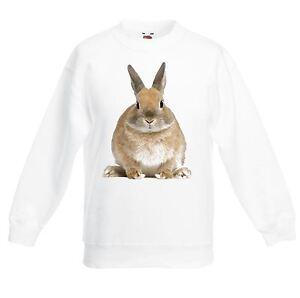 Bunny Rabbit Children's / Kids Unisex Sweatshirt Jumper - Cute Gift Present