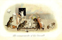ARTIST SIGNED  - THE AMUSEMENT OF THE LEARNED - Cats at school