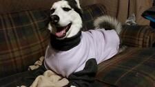 Extra Large Dog Jammie Shirt (Pajamas, fleece, warm)