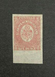 Newfoundland Stamp #20 Mint Hinged