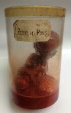 Pickled Punk in Jar Freak Show Gaff Oddity Sideshow Museum Quality One of a Kind