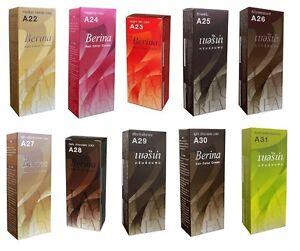 1 x Berina Hair Care Coloring Cream Professional Use Fashion Shade A22-A40