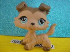 ORIGINAL Littlest Pet Shop Collie DOG # 893 a