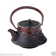 Nanbu Tetsubin - Mt.Fuji Landscape - 0.3 Liter - Japanese cast iron teapot w net