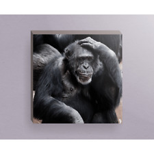 Black Ape Sitting Looking at Someone and Thinking 16x16 Canvas Wrap Wood Frame