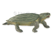 FREE SHIPPING | AAA 96935 Green Notched Turtle Realistic Model - New in Package