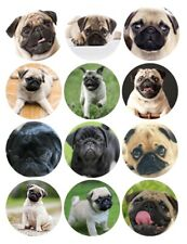12 Precut Edible Pug Cupcake Toppers