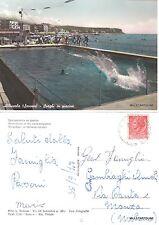 # ALBISSOLA: SVAGHI IN PICINA  1955
