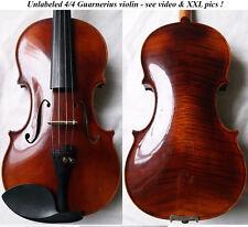 BEAUTIFUL GUARNERIUS VIOLIN 1980s VIOLINO - see video - バイオリン скрипка 小提琴 975