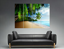 Plage Palmier Tropical Beach Sunshine Coast   Wall Art Poster A0 Large print
