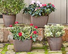 Flower Pot Plant Rattan Style Planter x 4, 2 sizes- Plants Pots Garden