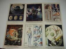 Álbum-libro. 1931. Alemania. Cuerpo humano. 52 imágenes
