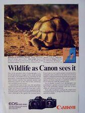 1988 Canon EOS 620/650 Camera Turtle Magazine Print Advertisement Page