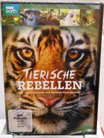Tierische Rebellen + DVD + Die einfallsreichsten und frechsten Tiere der Welt +