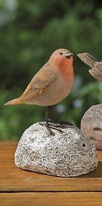 Bewegungsmelder Vogel rot Rotkehlchen