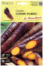semi carota cosmic purple