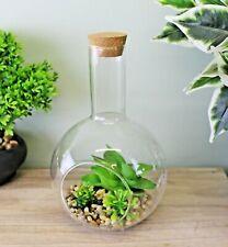 Medium Faux Succulent In Glass Terrarium Indoor Garden Ornament