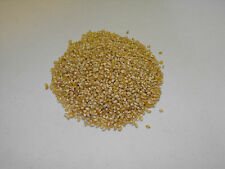 1 lb Japanese Hulless Popcorn Seed Heirloom OP Open Pollinated Non-GMO White