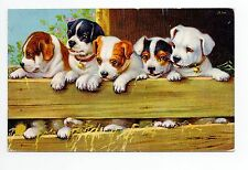 Animal CHIEN Chiens DOG dogs 52 carte fantaisie illustrateur 5 chiots