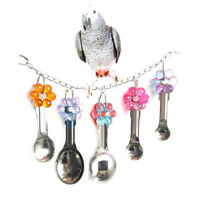 Bird Swing Toy with Metal Spoons for Parrot Budgie Parakeet Cockatiel Conure