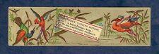 Mattison's Cholera Mixture Bird's Bookmark