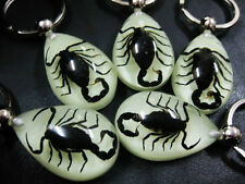 6pcs wholesale lot glow in the dark black scorpion-king water-drop fine keychain