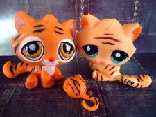 LITTLEST PET SHOP~LPS~FIGUR~905~1608~BENGAL TIGER~KATZE~CAT~SAMMLER~RAR SAMMLUNG