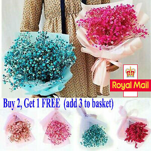 Dried Flowers Baby Breath Gypsophila Gift Box Decoration Photo 6 Colors Bouquet