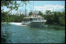 264017 Marina Aqua Ray Snorkel Boat Cruises The Mangroves A4 Photo Print