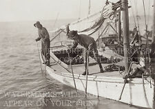 Mobile Bay AL Gulf oyster fishing boat 1911 photo CHOICES 5x7 or request 8x10 or