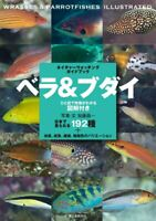 Wrasses and Parrotfishes Field guide Encyclopedia Large size book Japan FS NEW
