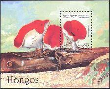 Sahara Republic 1997 Fungi/Mushrooms/Plants/Nature 1v m/s (b5815)