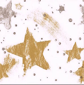 Silver & Gold Celebration! Stars Gift Tissue Paper 10 Printed Sheets