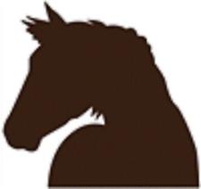 Country Horse Colt Head Mylar Stencil Art Airbrush Durable Reusable L656- #91* *