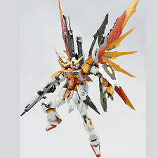 DRAGON MOMOKO MG 1/100 ZGMF-X42S DESTINY GUNDAM HEINE CUSTOM NEW Plastic Model
